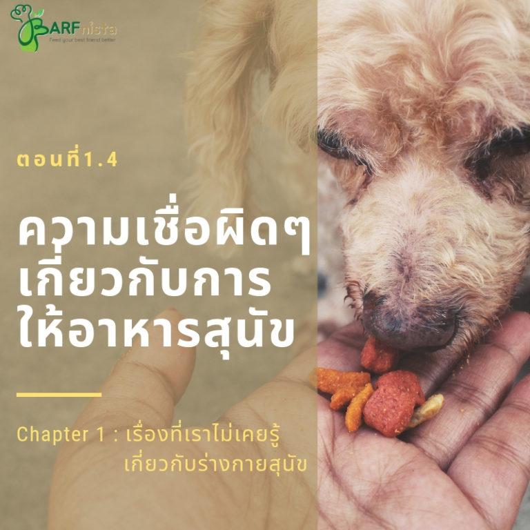 ความเชื่อผิดๆเกี่ยวกับการให้อาหารสุนัข