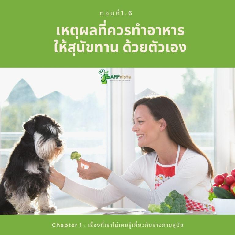เหตุผลที่ควรทำอาหารให้สุนัขทานด้วยตัวเอง