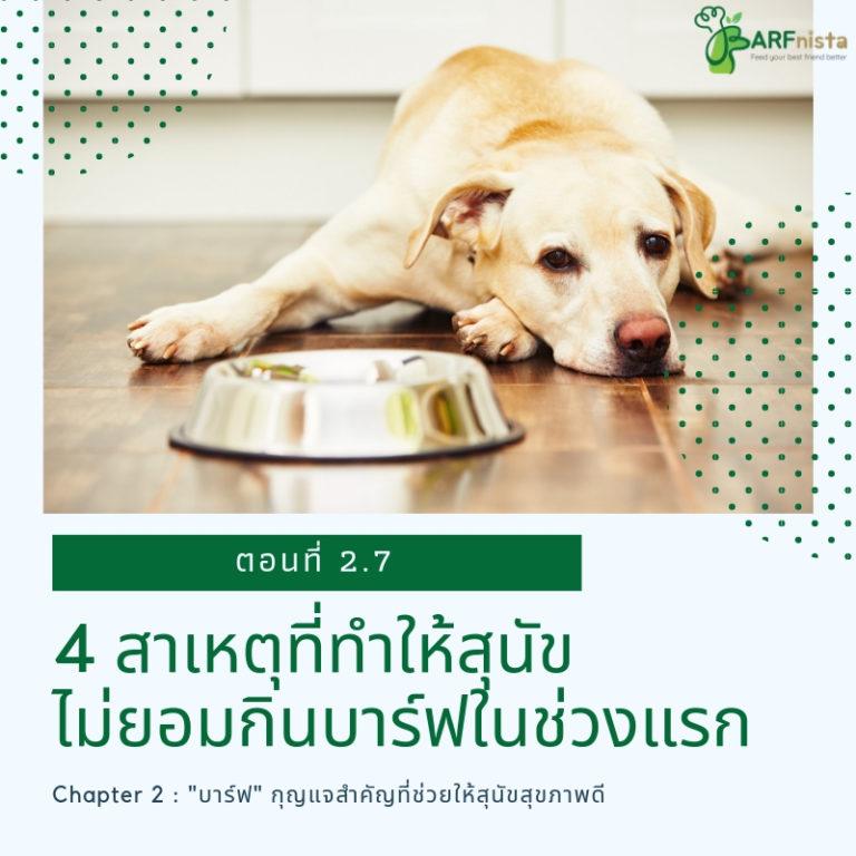 4สาเหตุที่ทำให้สุนัขไม่ยอมกินบาร์ฟในช่วงแรก