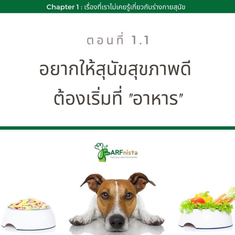 อยากให้สุนัขสุขภาพดีต้องเริ่มที่อาหาร