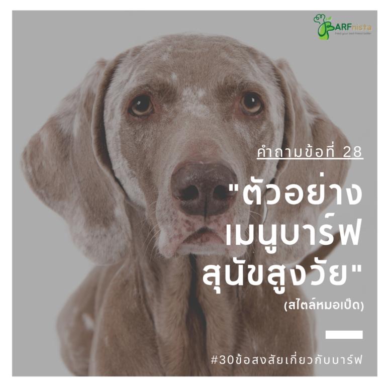 ตัวอย่างเมนูบาร์ฟสำหรับสุนัขสูงวัย