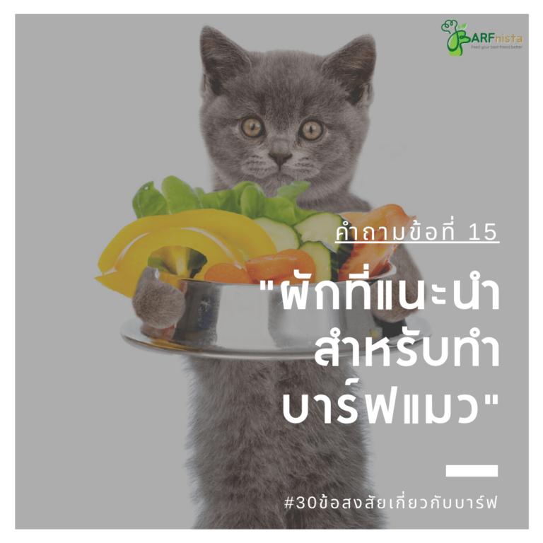 ผักที่แนะนำ สำหรับทำ บาร์ฟแมว