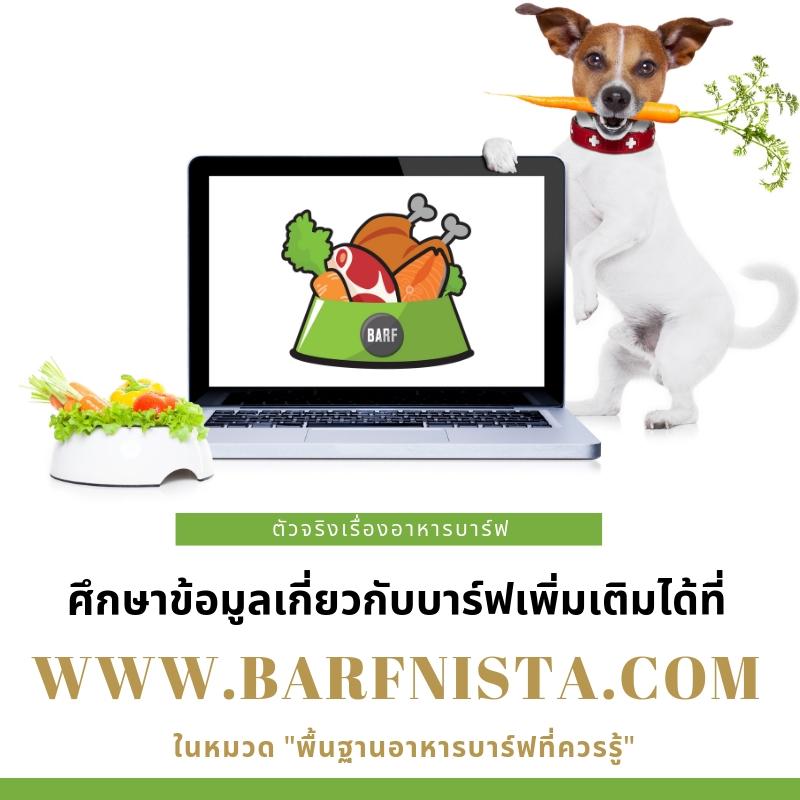 ศึกษาบทความบาร์ฟได้ที่ www.barfnista.com